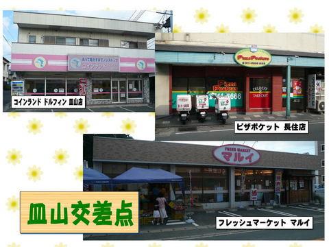 sarayama_cross.jpg